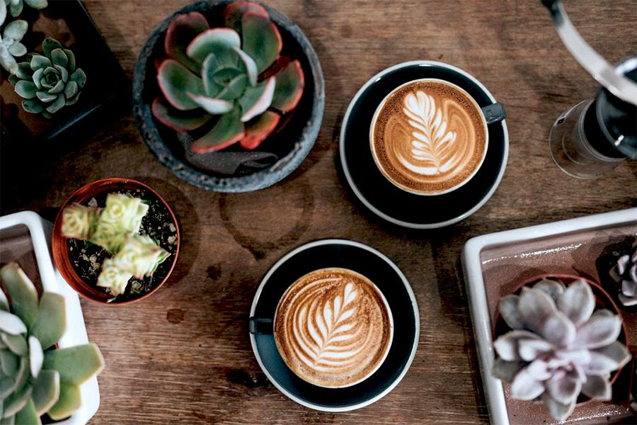 Commercial Hub & Cafe